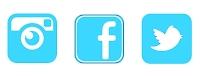 Social media feed